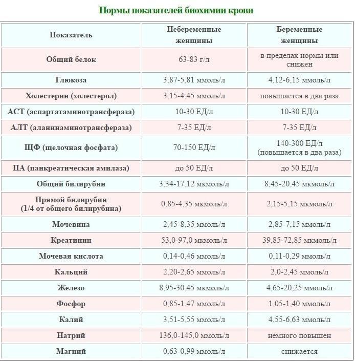 Нормы показателей биохимии крови при беременности